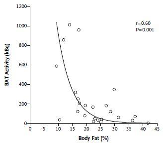 BBT en lichaamsvet