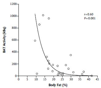 BAT and body fat