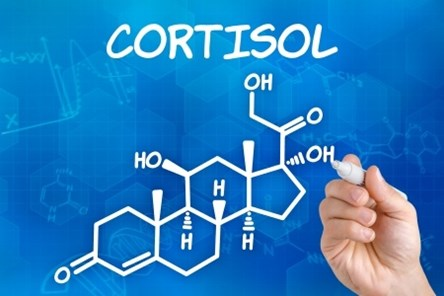 cortisol-hand