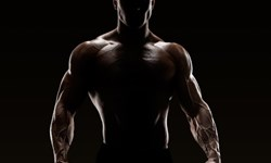 The Best Way to Build Muscle in the Shortest Time Possible