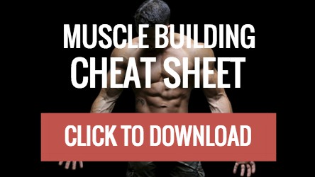 Muscle Building Cheat Sheet