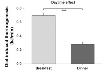 The average diet-induced thermogenesis after breakfast versus dinner